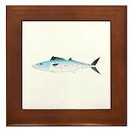 Atlantic Spanish Mackerel Framed Tile