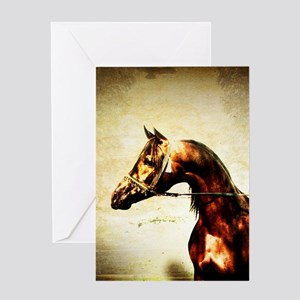 The Bay Stallion Greeting Cards