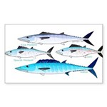 4 Atlantic Mackerels Sticker