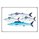 4 Atlantic Mackerels Banner