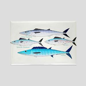 4 Atlantic Mackerels Magnets