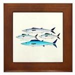4 Atlantic Mackerels Framed Tile