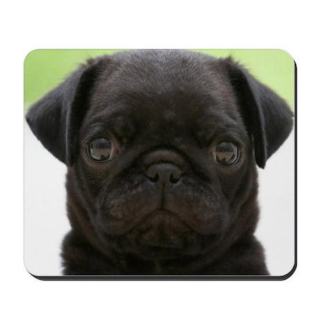 Black Pug Mousepad & Black Pug Gifts - CafePress