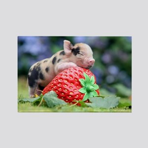 Pig and Strawberry Rectangle Magnet