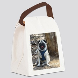 Sid at the Park 2 Canvas Lunch Bag