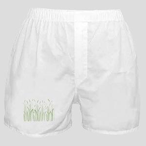 Delicate Grasses Boxer Shorts