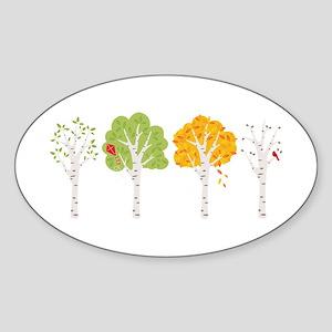 Four Seasons Spring Summer Fall Winter Birch Trees