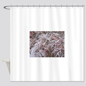 Japanese Maple in Frost Shower Curtain