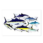 7 tuna Postcards (Package of 8)