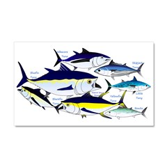 7 tuna Car Magnet 20 x 12