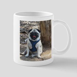 Sid at the Park 2 Mug