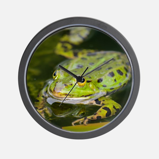 European Frog Wall Clock