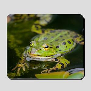European Frog Mousepad