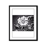 Sunflower at night Framed Panel Print