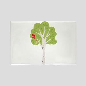 Summer Birch Tree Kite Magnets
