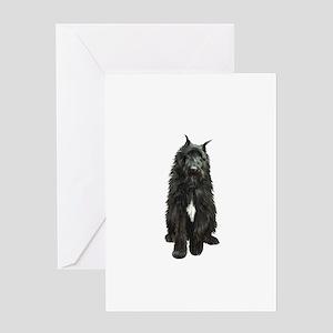 Bouvier (black) Greeting Card