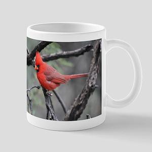 Cardinal in Sabino Canyon Mugs