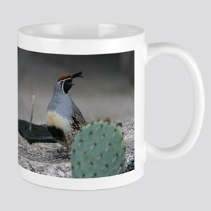 Gambels Quail in Sabino Canyon Mugs