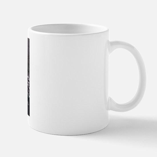 F**ck Iraq Mug