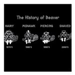 History of Beavers Square Car Magnet 3
