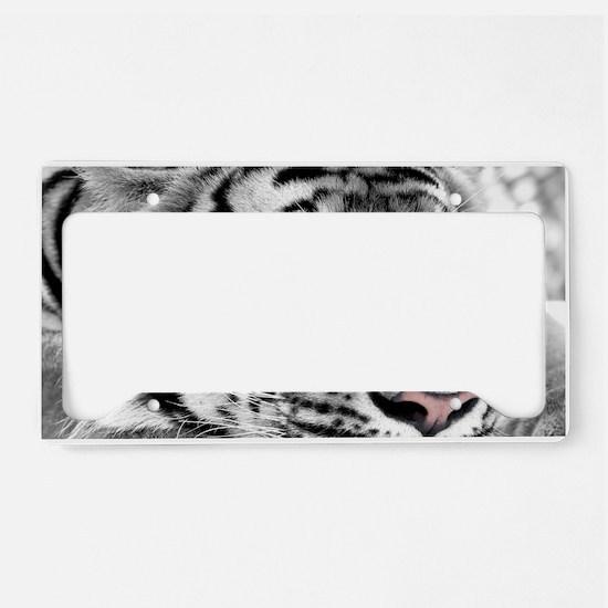 Lazy Tiger License Plate Holder