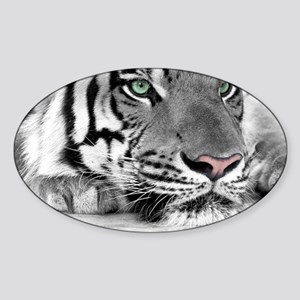 Lazy Tiger Sticker