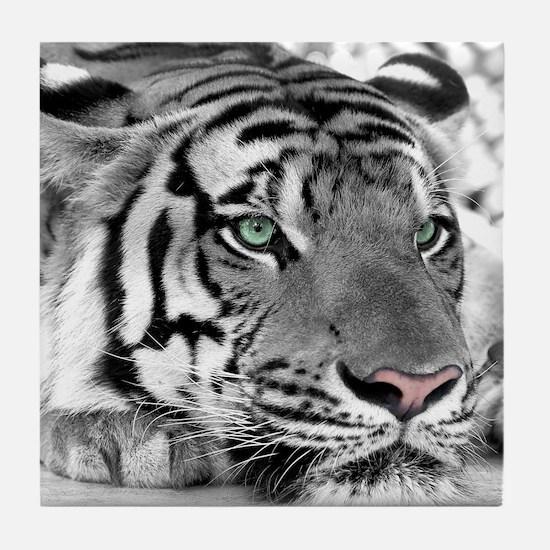 Lazy Tiger Tile Coaster