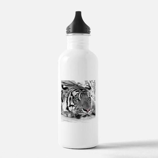 Lazy Tiger Water Bottle