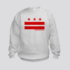 Washington DC Flag Kids Sweatshirt