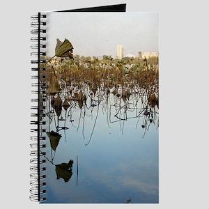 Reflections on Xuanwu Journal