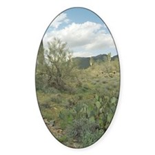 Cactus Coloring Photo Sticker (Oval)