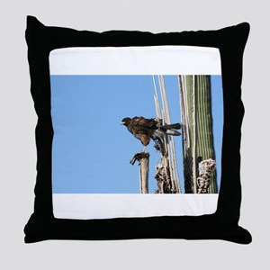 Harris Hawk Ruffling Feathers Throw Pillow