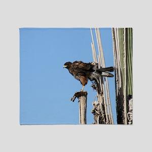 Harris Hawk Ruffling Feathers Throw Blanket