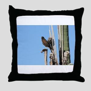 Harris Hawk in Arizona Throw Pillow