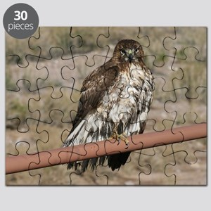 Red-Tailed Hawk Puzzle