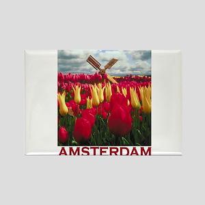 Amsterdam Tulips Rectangle Magnet
