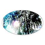 Sun glare Sticker