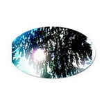 Sun glare Oval Car Magnet