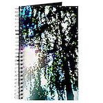 Sun glare Journal