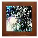 Sun glare Framed Tile