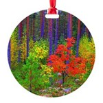 Fall colors Ornament
