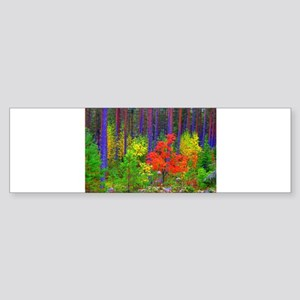 Fall colors Bumper Sticker