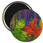 Fall colors Magnets