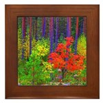 Fall colors Framed Tile
