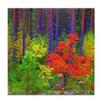 Fall colors Tile Coaster