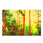 Sunny forest Postcards (Package of 8)