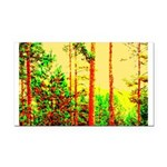 Sunny forest Rectangle Car Magnet