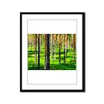 Pine forest Framed Panel Print