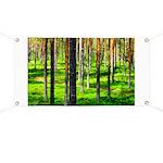 Pine forest Banner