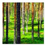 Pine forest Square Car Magnet 3